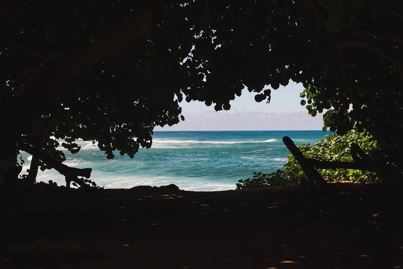 Chasing Paradise   Oahu, HI